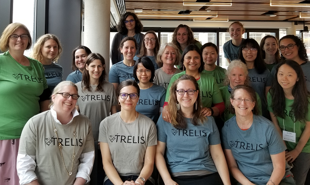 TRELIS Workshop 2019